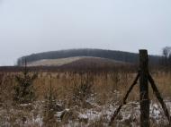 Jó a kilátás a sok kivágott fa miatt