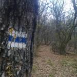Dorog Piliscsaba OKT túra 2014-11-22