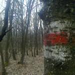 Pest megyei piros 2. szakasz 2015. március 28.