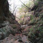 Páris patak szurdokvölgye és az Ipolytarnóci Ősmaradványok