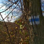 OKT Cserhát, Becske – Cserhátsurány, az OKT 19. szakasz teljesítése